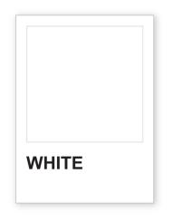 Pantone-Chip-White